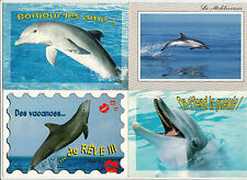 Lot 4 cartes postales DAUPHIN DOLPHIN 1