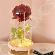 Extra Large Enchanted Deep Red Rose in Glass Dome Bell Jar with LED Lights