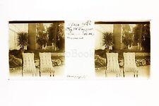 Jardin d'une villa Nice France Plaque Stéréo positive 1924