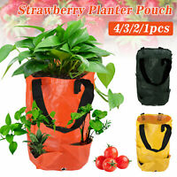 Flower Herb Bags Tomato Strawberry Hanging Planter Grow Bag Plant Pouch Bags US