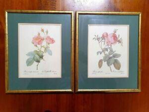 Pair of Vintage Framed Rose Art Prints - Artist PJ Redoute