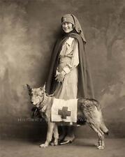 RED CROSS NURSE RESCUE DOG VINTAGE PHOTO DISASTER RELIEF WORLD WAR ONE  #21242