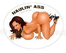 Sexy Bomber Nose Art Pin-up Girl sticker decal HAULIN ASS Nina Mercedez