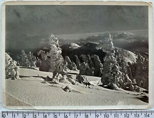 1938 Okiść śnieżna Winter Mountains Snow POLISH Photo Postcard RPPC Portrait