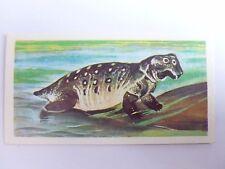 Brooke Bond Prehistoric Animals tea card 37. Lystrosaurus. Dinosaurs.