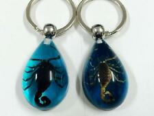 PAIR REAL GOLDEN BLACK SCORPION LUCITE KEYCHAIN INSECT JEWELRY TAXIDERMY GIFT