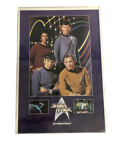 VTG Star Trek 25th Anniversary Poster 90s 25x37 mounted