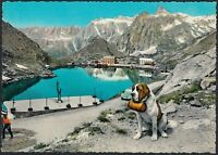 AA9064 Valle d'Aosta - Gran San Bernardo - Lago e versante Italiano - Cartolina