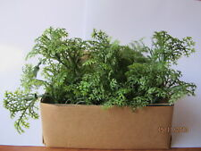 Clearance Wholesale 5 Miniature Spring Green Bedding Plant Dollhouse Garden TG#1