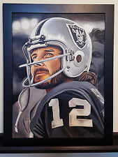 5D  Diamond Painting  FULL DRILL 30X30 cm OAKLAND RAIDERS SKULL