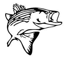Striper Decal, Rockfish, Fishing Decal for Truck, Car, Window, Outdoor, Boat etc