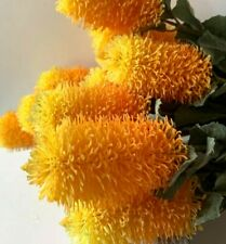 Artificial Flower Stem Australian Native Flowers Orange Yellow Banksia Silk Fake