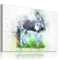 PAINTING DONKEY DRAWING ANIMALS PRINT CANVAS WALL ART PICTURE  AB34 MATAGA