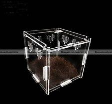 Acrylic DIY Terrestrial Acrylic Reptile Terrarium Geico Snake Frog 11*11*11cm