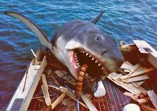 Jaws Great White Shark Classic Movie 1975 8x10 Photo Print