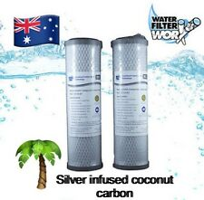 """1 MICRON 100% SILVER INFUSED CARBON WATER FILTERS TWIN PACK 10"""" x 2.5"""" 