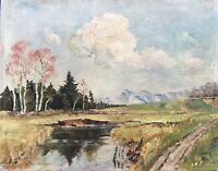 Oil Painting Landscape German Painter Voralpen With Water And Birch
