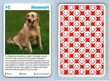 Hovawart - Dogs Waddingtons Super Top Trumps Card