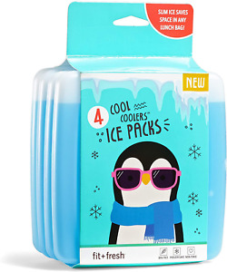 Reusable Ice Packs For Coolers Picnic Lunch Bag Travel Reusable Long Lasting 4ct