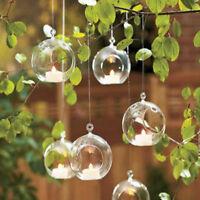 Neu Hängende Glass Vase Blumenvase Pflanze Glas Wandvase 8cm Ball Form