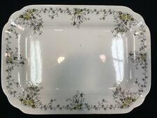 T&R BOOTE IRONSTONE SCHONBRUNN EARLY ANTIQUE RECTANGULAR PLATTER RARE 14.5""