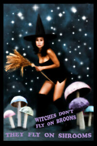 Mini Poster 4x6 Fly High Art: WITCHES DON'T FLY ON BROOMS   THEY FLY ON SHROOMS
