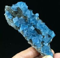 192g Translucent Deep Blue Cubic Fluorite & Smoke Quartz Mineral Specimen Ad