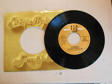 THE GREATEST AMERICAN HERO Joey Scarbury / HILL STREET BLUE Mike Post NEW 45