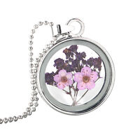 Dried Flower Glass Necklace Pendant Round Crystal Silver