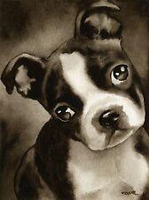 Boston Terrier Puppy Watercolor Art Print Signed by Artist Djr
