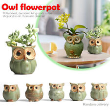 Cute Owl Mini Ceramic Flower Pot Succulent Plant Flowerpot Home Office DIY Decor
