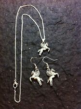Tibetan Silver Flying Horse Pony Fairy Charm Necklace Earring set Magical