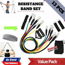New listing Fitness 13 PCS Resistance Band Set Yoga Pilates Abs Exercise Tube Workout Bands