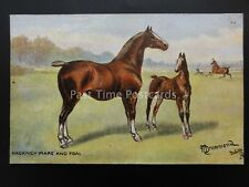 Horse Studies HACKNEY MARE AND FOAL After N. Drummond by Raphael Tuck 9065