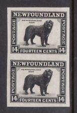 Newfoundland #194a XF/NH Imperf Pair