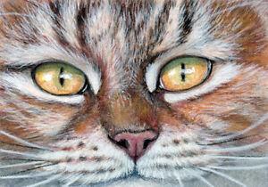 ACEO ORIGINAL Tabby cat  1008, mixed painting kitten, s-lana