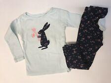 BabyGap Girls Easter Rabbit Bunny Pajamas Long Sleeve Sleep Set Spring Blue, 2T