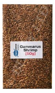 Gammarus Shrimp Dried Tropical Fish & Reptile Food Aquarama Brand  (1 x 50g Bag)