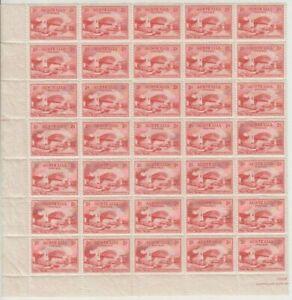 Stamps 2d red Sydney Harbour Bridge bottom left hand corner block of 35, MUH