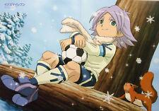 Inazuma Eleven/Carnival Phantasm poster Tsukihime Fate go official anime
