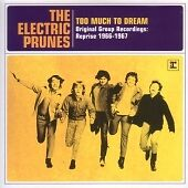 The Electric Prunes - Too Much to Dream - Original Group Recordings (Reprise...