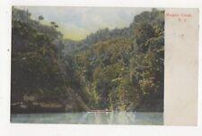 Mangaio Creek New Zealand 1911 Postcard  262a