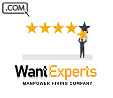 WantExperts.com - Premium Domain Name For Sale HIRING PEOPLE JOB DOMAIN