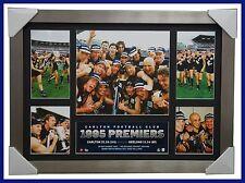 1995 AFL Premiers Carlton Blues OFFICIAL Limited Edition Print Framed - KERNAHAN