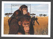 NICARAGUA Sc 2212 NH SOUVENIR SHEET OF 1996 - MONKEYS