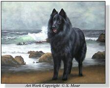 Belgian Sheepdog Shepherd Sea Star Beach Ocean Waves Sea OE Art Print SMOAR