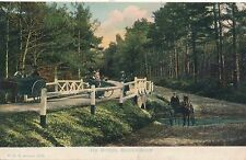 POSTCARD  HAMPSHIRE  BROCKENHURST  Ivy  Bridge