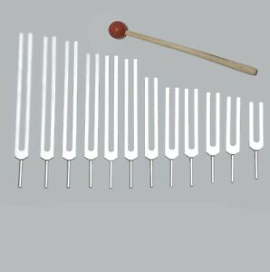 12 Mineral Nutrients Tuning Forks Activator for Healing Machine Made