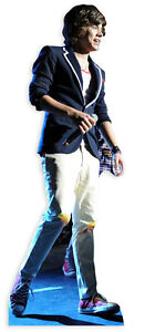 Styles, Harry LIFESIZE CARDBOARD CUTOUT STANDEE STANDUP Pop Star Singer On Stage
