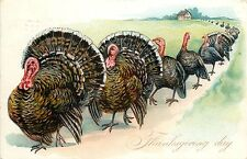 Tuck Embossed Postcard Thanksgiving Day Series No.123 Line of Turkeys on Parade